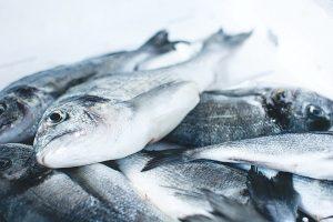 Balık ile ilgili bilmediklerimiz, yanlış bildiklerimiz